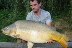 P1550864 (17 kg)